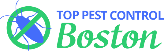 Top Pest Control Boston